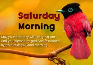 Saturday Good Morning Images Wallpaper Pics Free Download