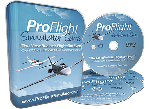 ProFlightSimulator  Flight Sim Game