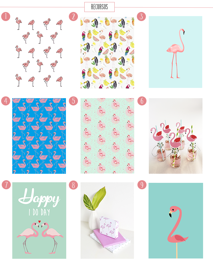 photo flamingo2.png