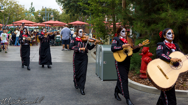 Disneyland Resort, Disney California Adventure, Pacific Wharf, Mariachi, Halloween Time