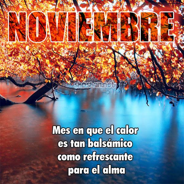 bienvenido_noviembre_2014