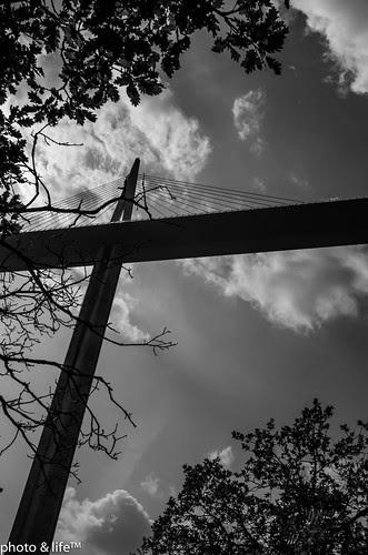 VM06 by photo & life™
