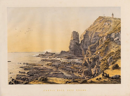 Castle Rock, Cape Schank
