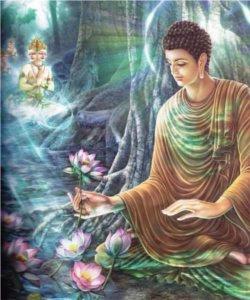 http://www.dhammadana.org/bouddha/01/img/fruits-eveil.jpg
