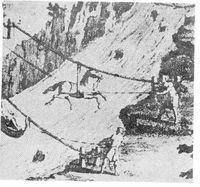 Animal powered ropeways
