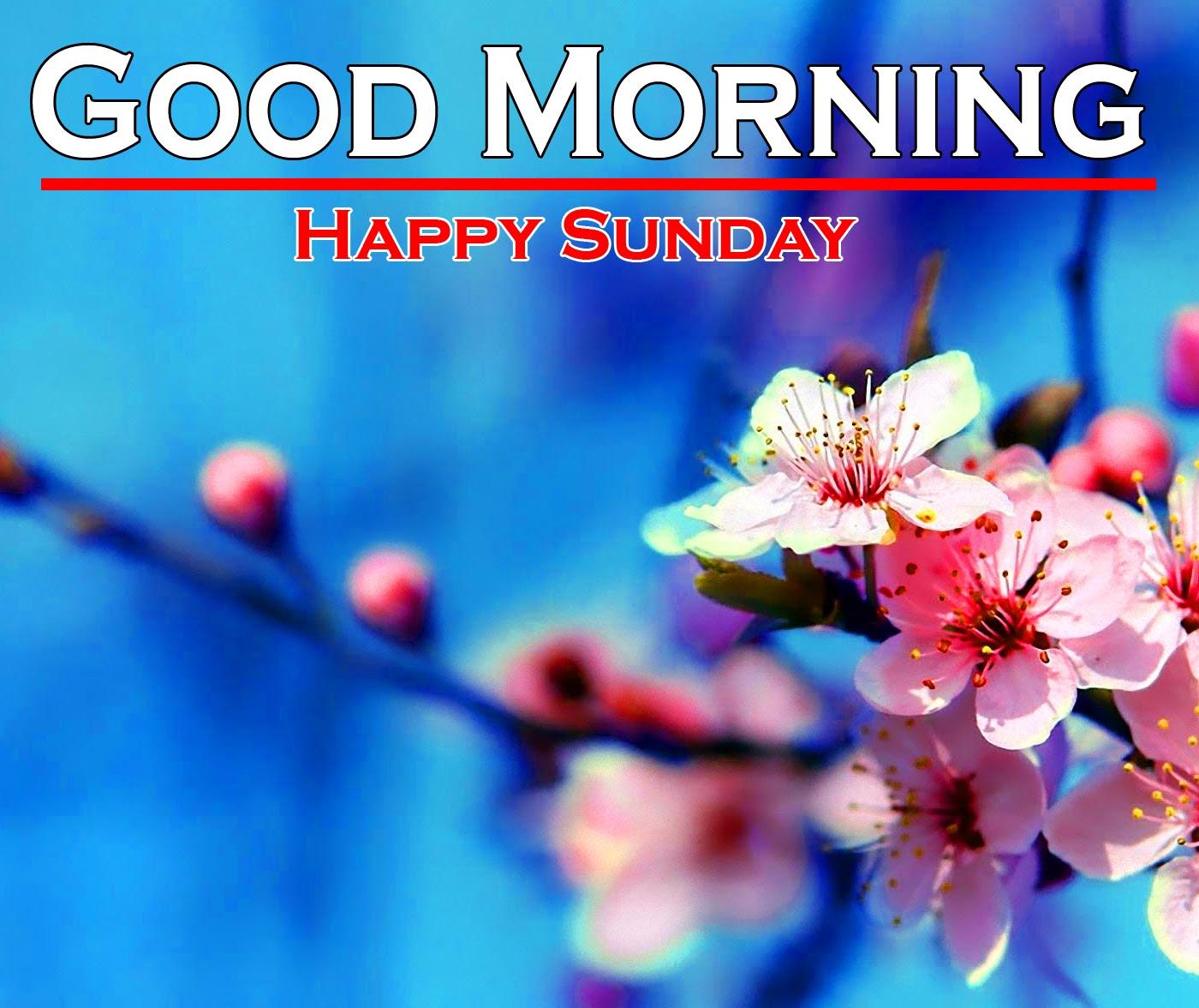 Sunday Good Morning Images 11 1