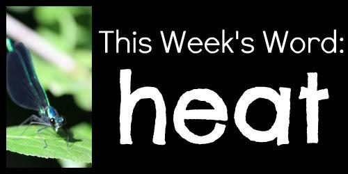 This week, Heat