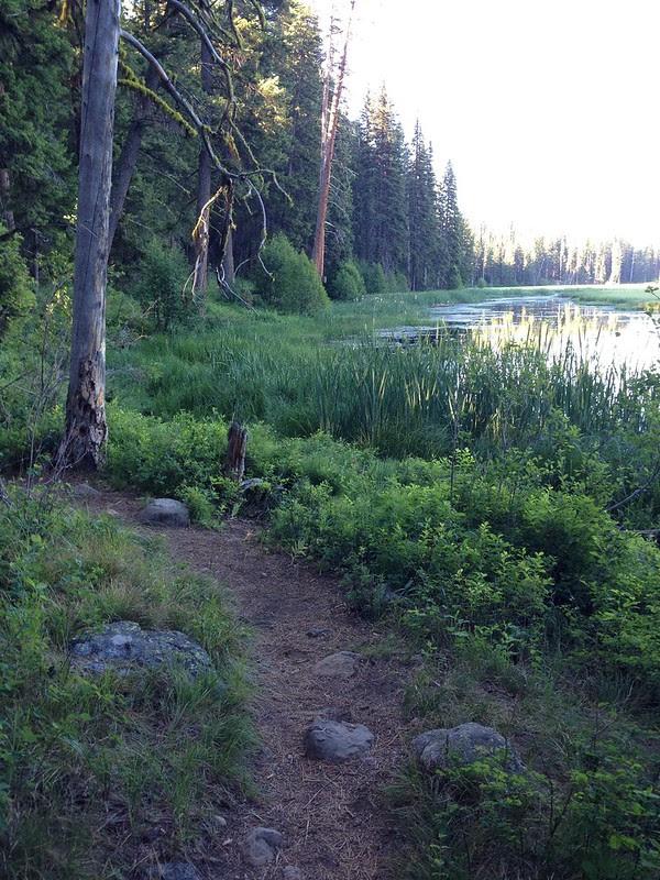 Lily Marsh Trail, Ponderosa State Park