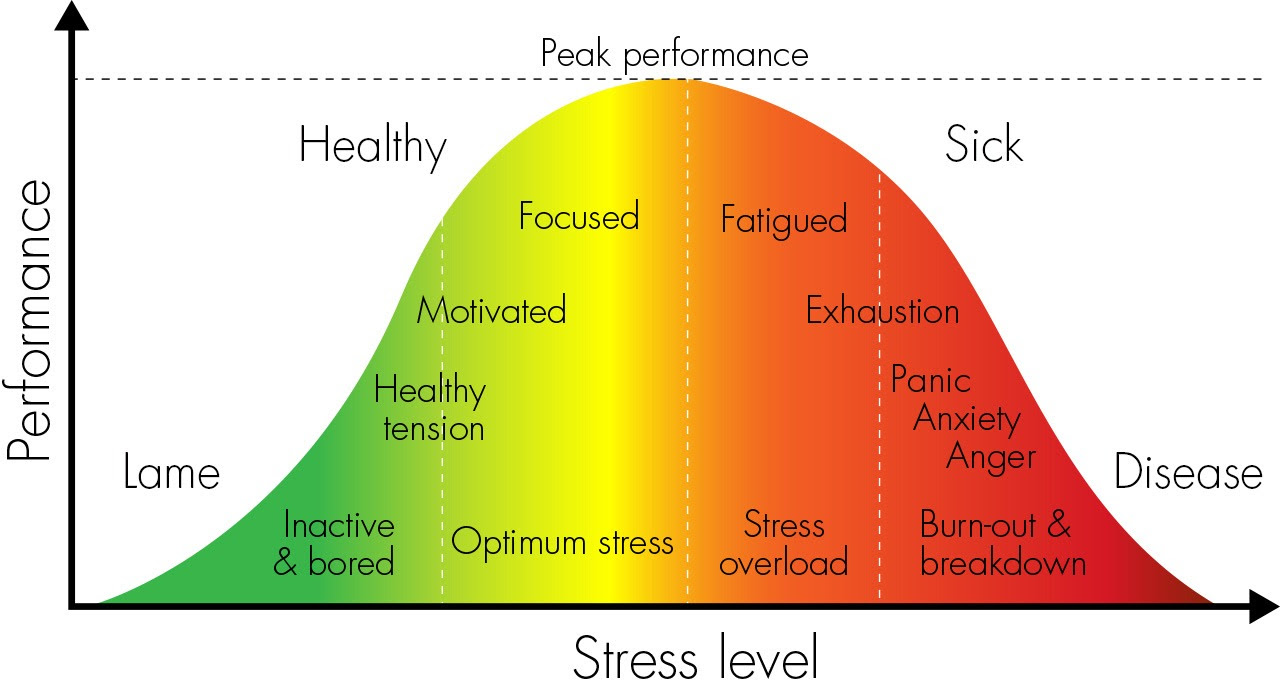 Are you Stressed? | Get Help: Mindfulness & Clinical ...