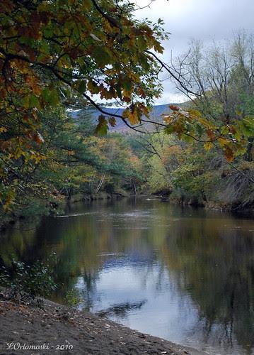 The Ellis River