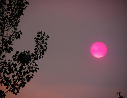 A Stranger Than Strange Sunset