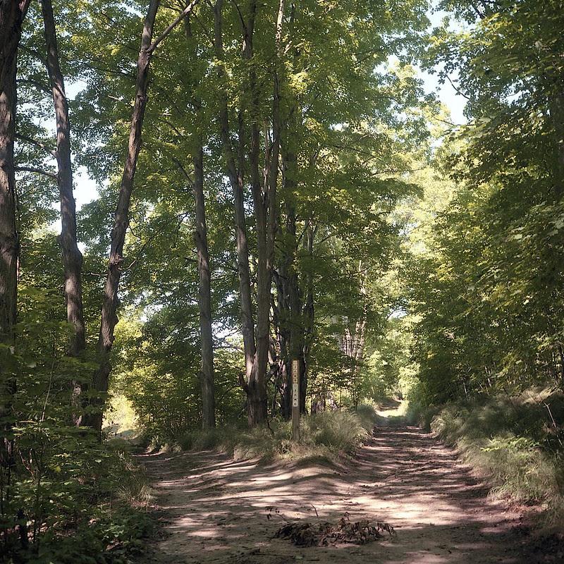 Dominion Trail