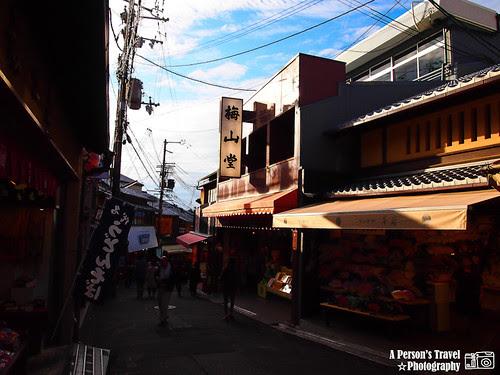 2011Kyoto_Japan_ChapEight_13