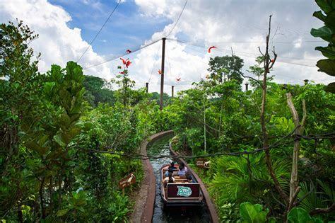 AMAZON RIVER QUEST BOAT RIDE IN RIVER SAFARI OPENS TO PUBLIC   Wildlife Press