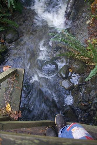 fast creek