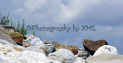 rocks and weeds against the blue sky