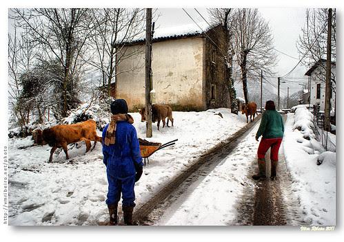Rural scene in Alles #3 by VRfoto