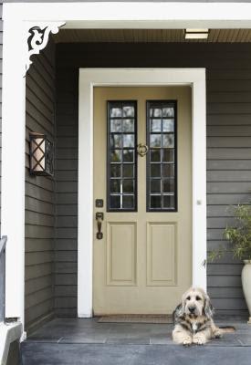 The door casing is the trim around the door.