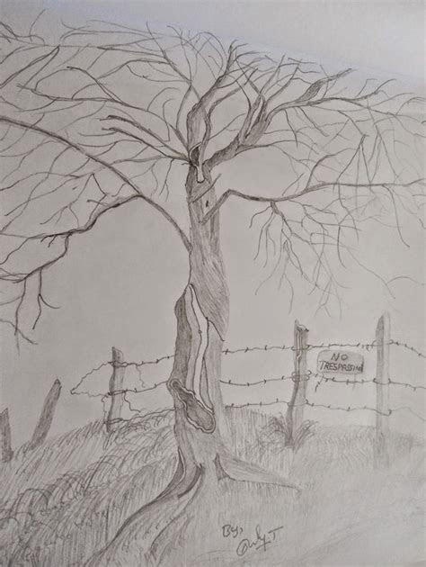 landscape pencil drawing  natural pencil sketching
