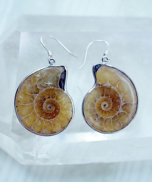 Ammonite, Earrings, Sea, Fossil, Snail, Shells, Gem