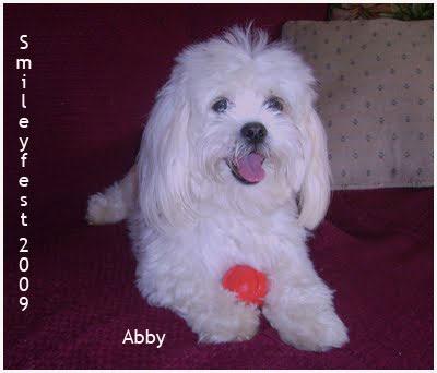 22-Abby---2