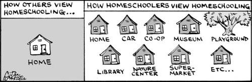 Home Spun comic strip #417
