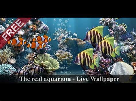 O aquário real   LWP ? Apps no Google Play