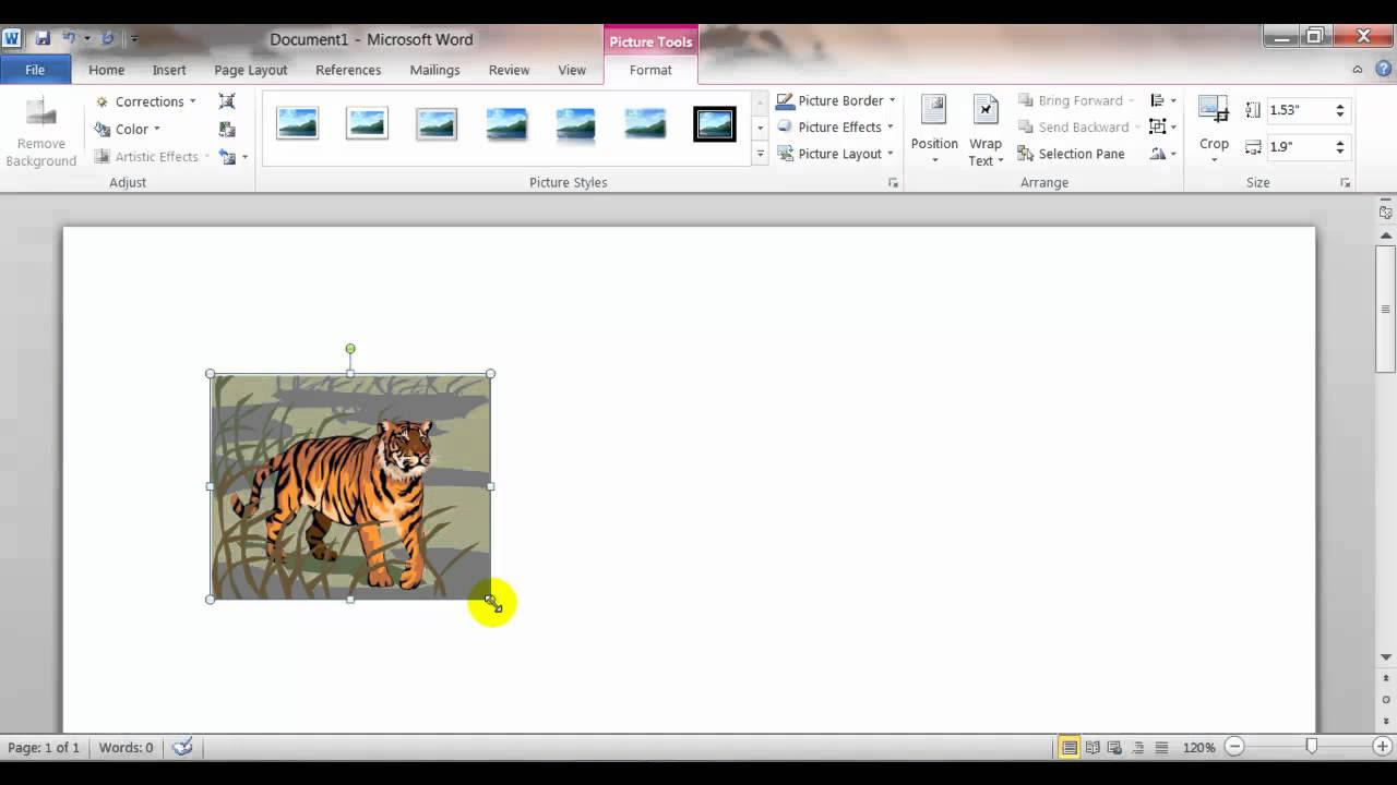 Inserting, Sizing, and Moving Clip Art and Pictures in ...