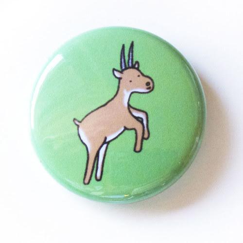 Antelope - Button 02.04.11