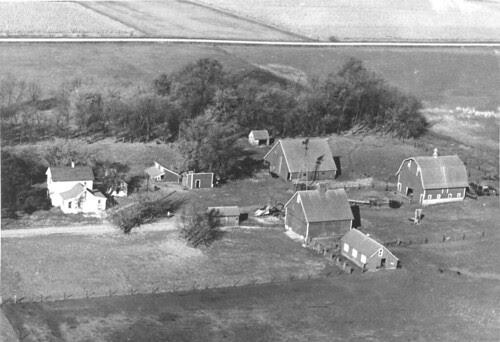 Farm east of Lake View Iowa