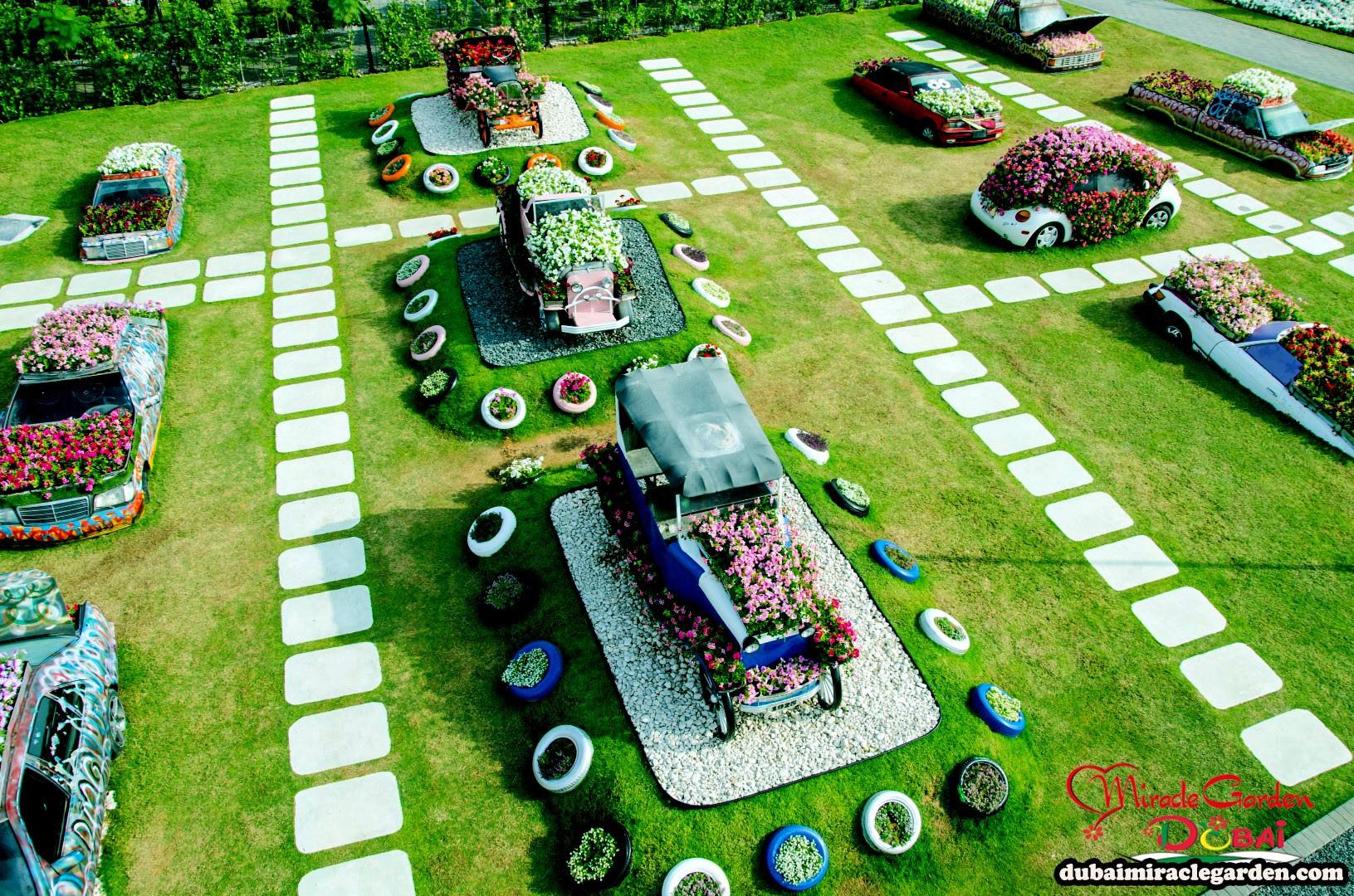 Dubai Miracle Garden 29
