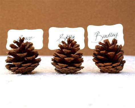 Wedding Place Cards Escort Card Favor Pine Cone Card Holder