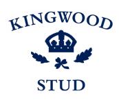 kingwoodstudcom ile ilgili görsel sonucu
