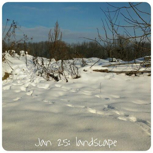 Jan 25: landscape .. #fmsphotoaday  #nofilter #winter