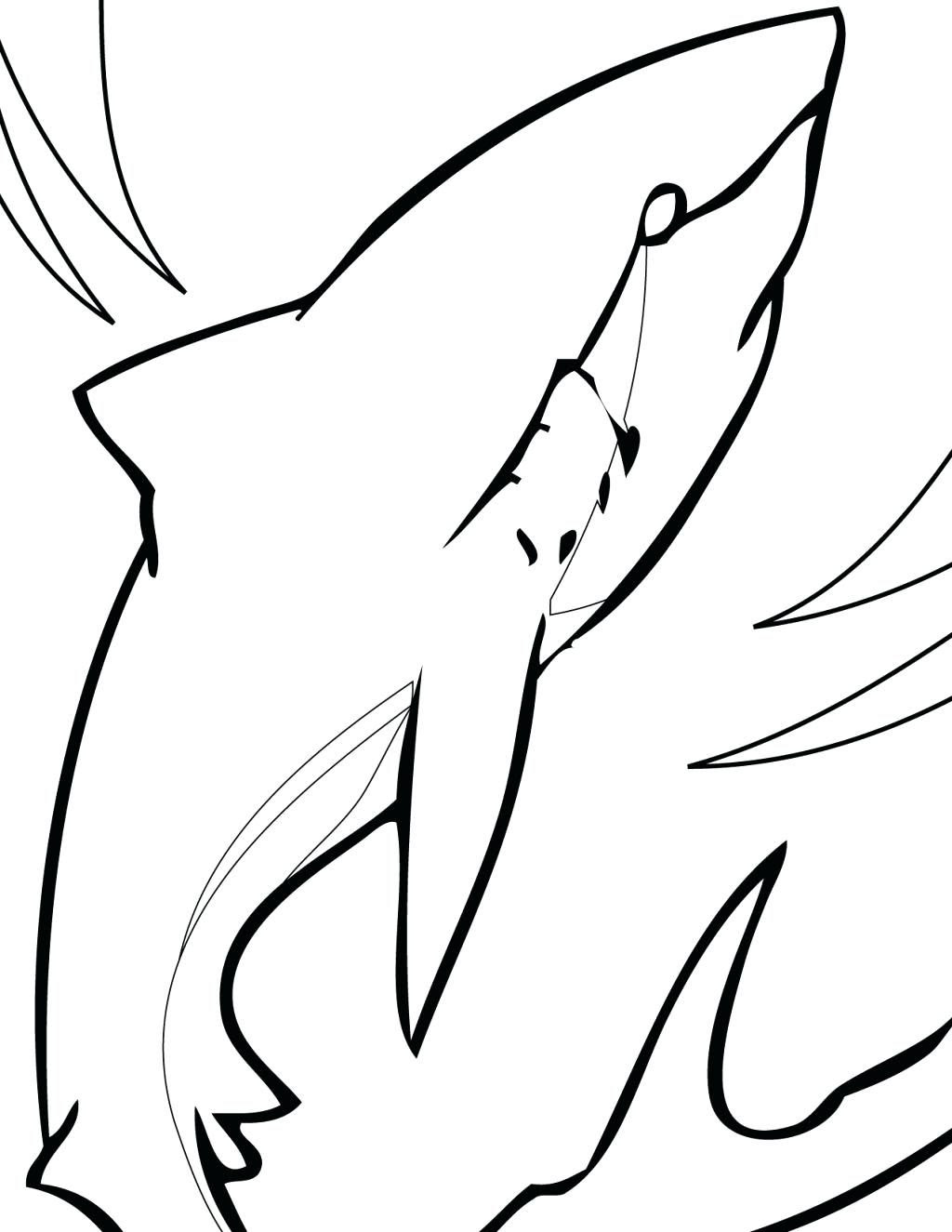 Shark With Mouth Open Drawing at GetDrawings | Free download