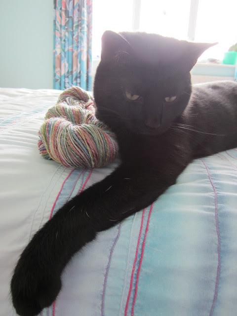 Flo likes yarn (1)