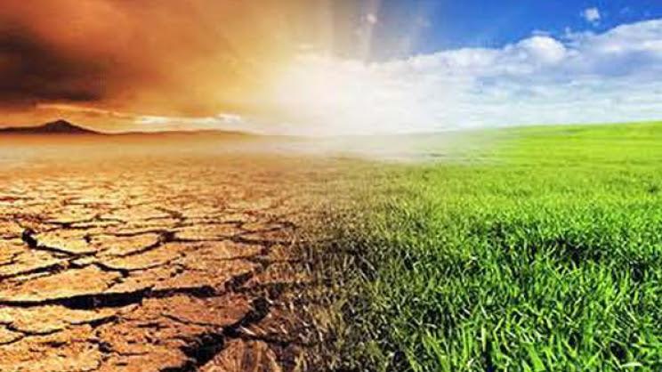 Επιπτώσεις στη γεωργία της κλιματικής αλλαγής