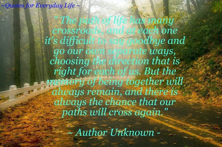 Quotes About Paths Of Life 74 Quotes