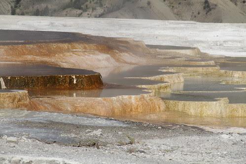 Yellowstone with Pa 287