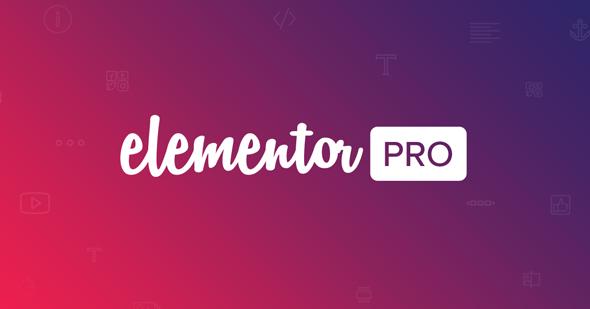 Elementor Pro v3.0.10