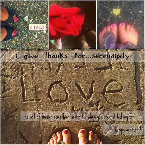 {Gratitude} Day 23 ~ Serendipity