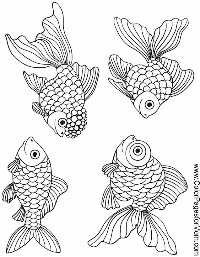 Seascape - Ocean Coloring Page 47