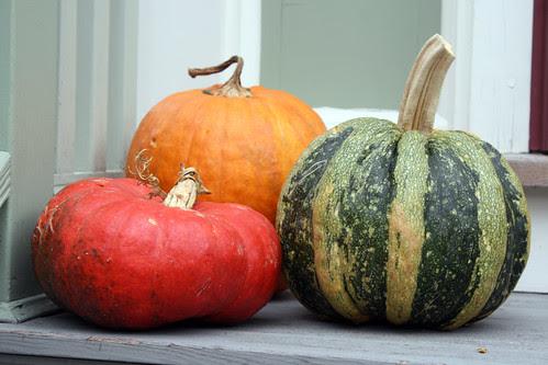 pumpkins046