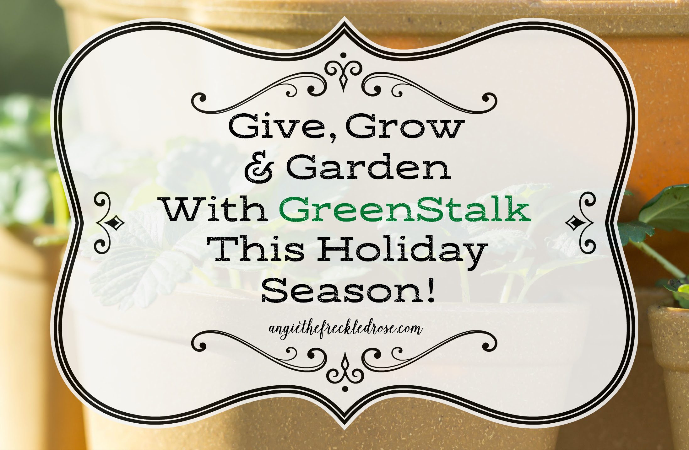 Give, Grow & Garden With Greenstalk This Holiday Season! | angiethefreckledrose.com