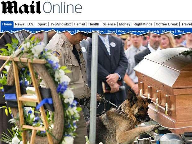 Figo coloca sua pata sobre caixão do companheiro morto durante o funeral Foto: Jonathan Palmer/Herald-Leader / Reprodução