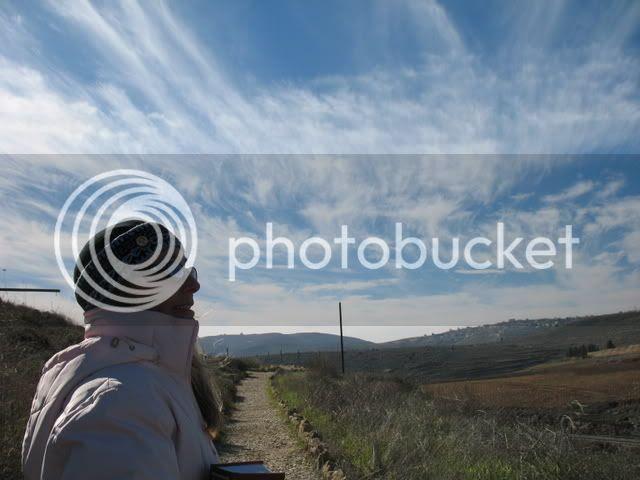 Tel Shiloh II 3