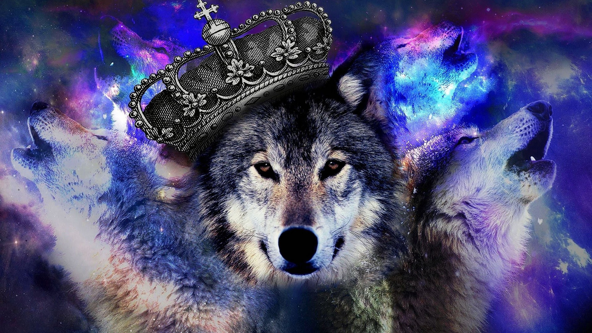 Cool Wolf Computer Wallpapers 2021 Cool Wallpaper Hd