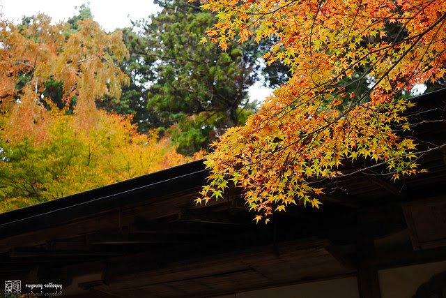 Panasonic_GX7_Kyoto_21