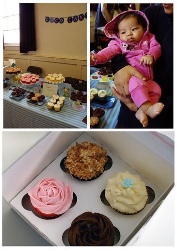 coco cake cupcakes at blim!