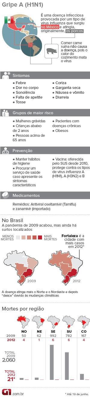 Info gripe A H1N1 (Foto: Arte/G1)
